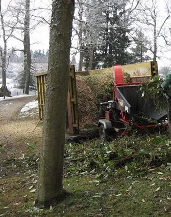 Devis entretien espaces verts elagage abattage for Devis elagage